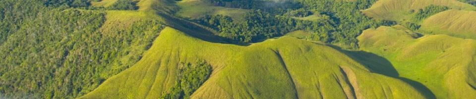 Papua Neuguinea FAIRTRADE