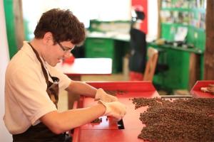 Bio-Kaffee  – sozial und nachhaltig von Anfang an.